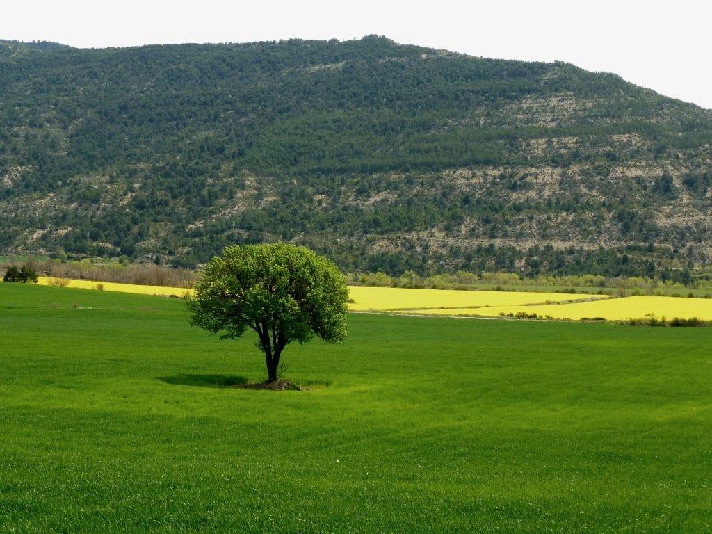 paysage aragonais