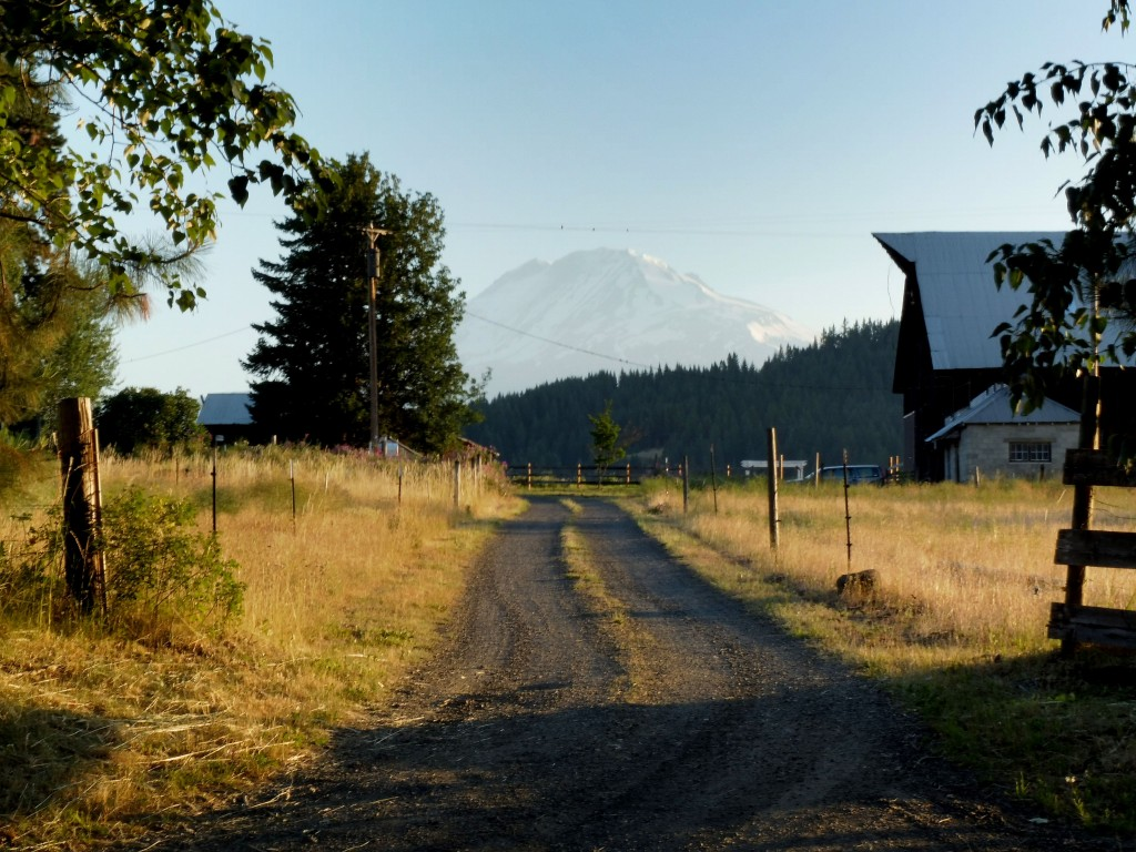 Mont Adams - état du Washington