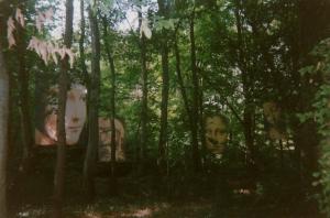 Jardin du Clos Lucé