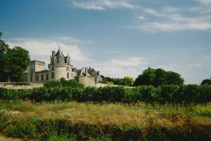 chateau de Brezé