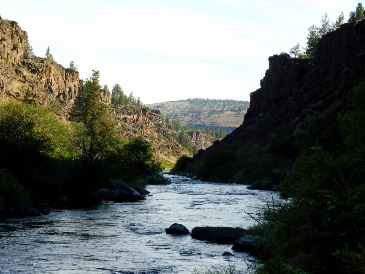 canyon de la Deschutes River