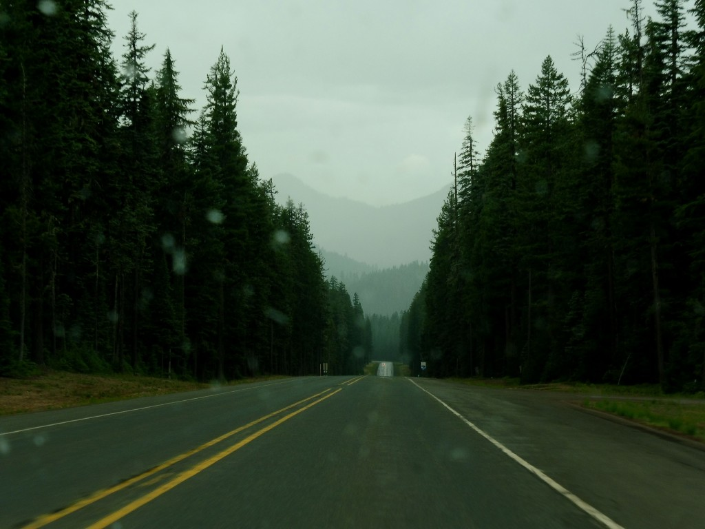sur la route entre les forêts dans l'Oregon