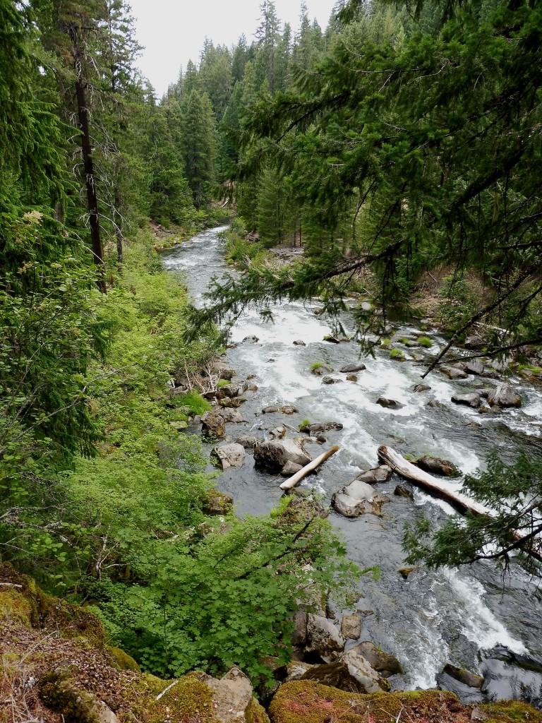 La Rogue River