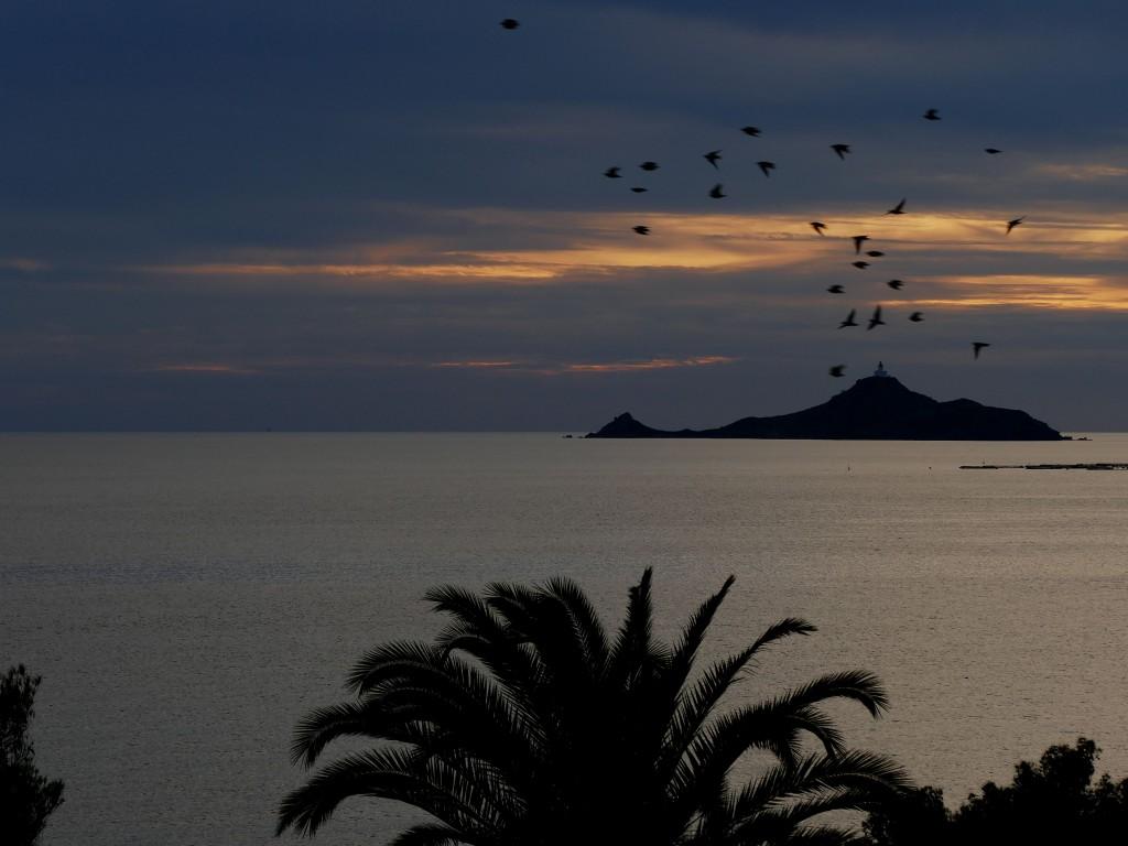 coucher du soleil sur les îles Sanguinaires