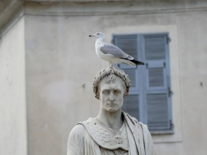 mouette sur une sculpture - Ajaccio