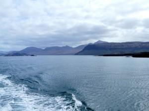 sortie en bateau au large de l'île de Mull (Ecosse)