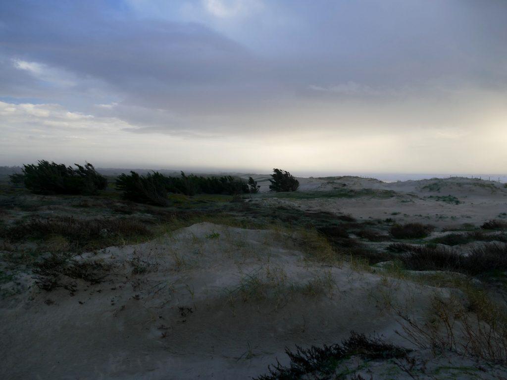 île d'oléron en hiver