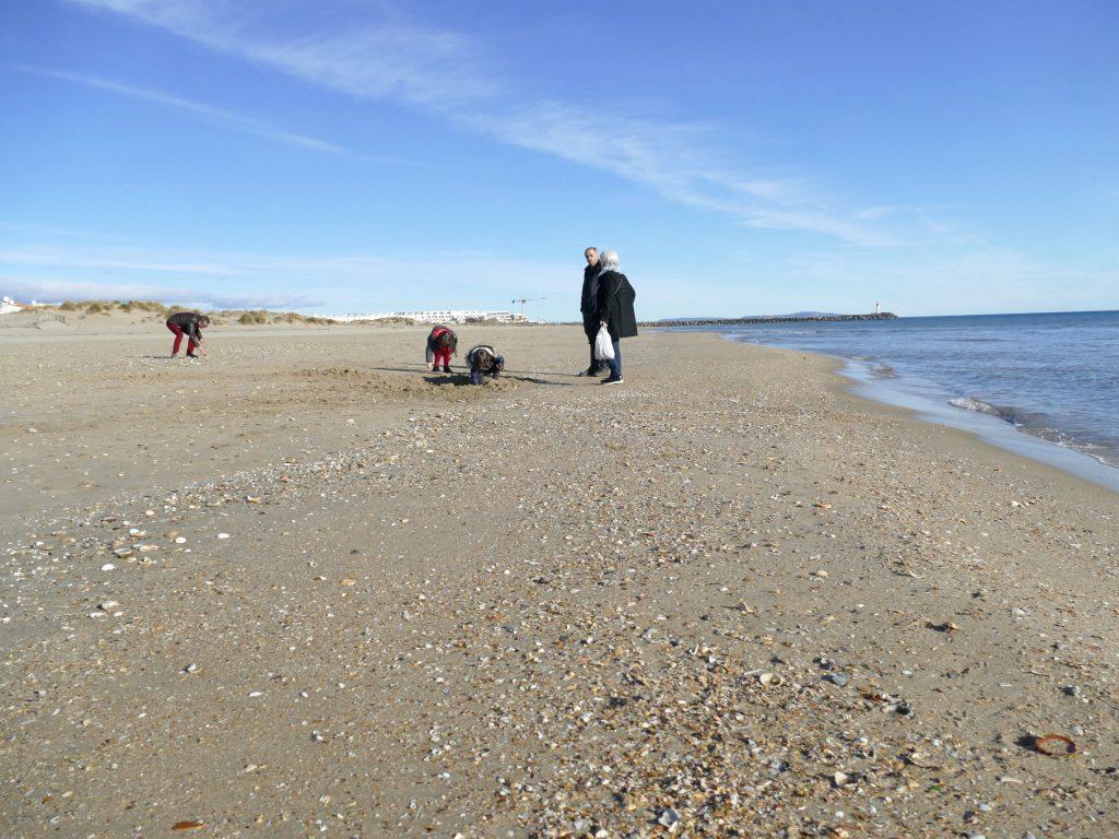 Cueillette de coquillages sur plage de la roquille - cap d'agde