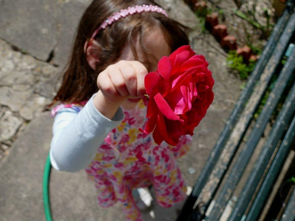 enfant montrant une rose rouge