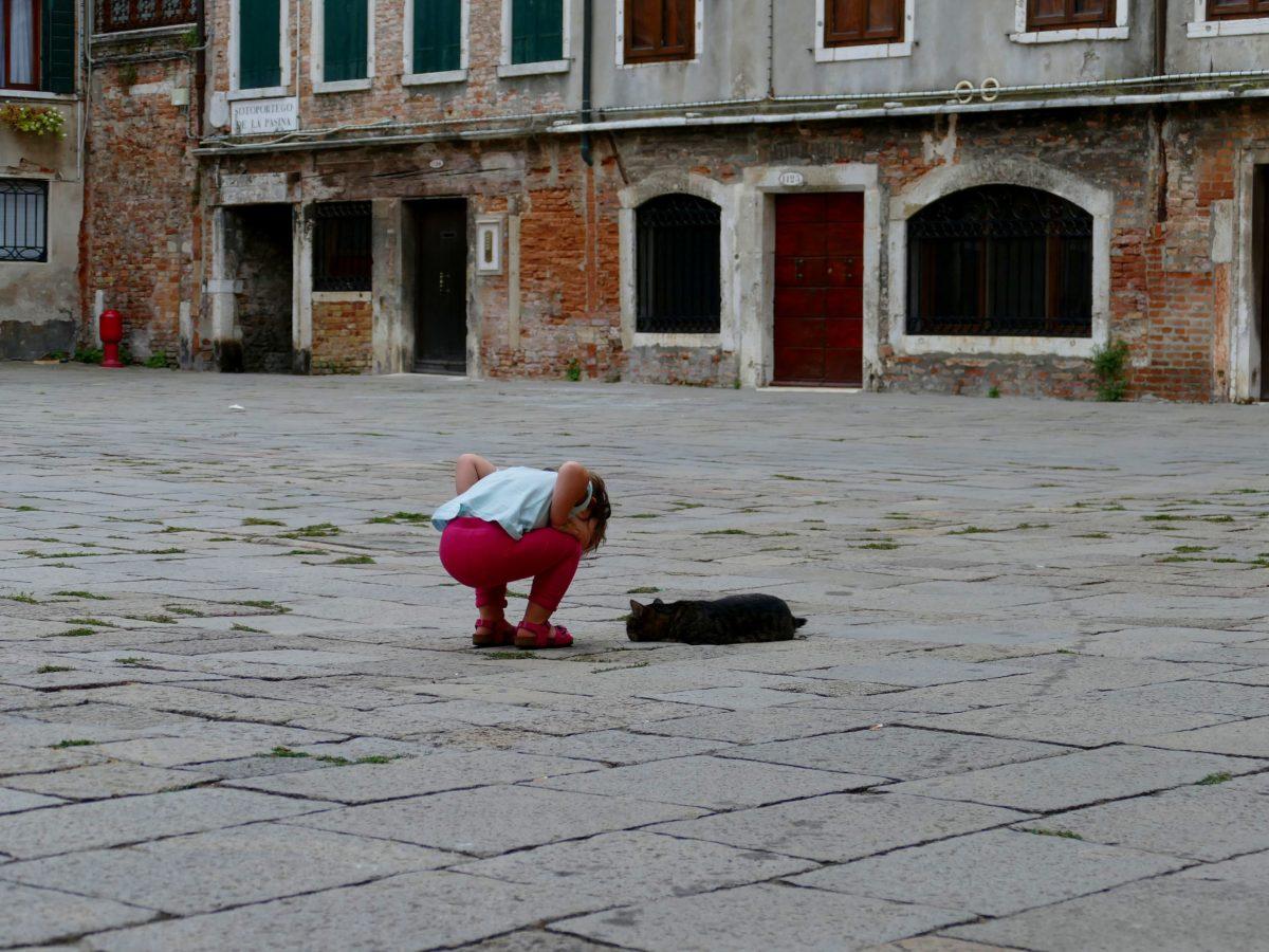 enfant en discussion avec un chat vénitien