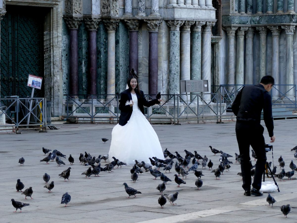 mariée un pigeon sur la tête devant San Marco