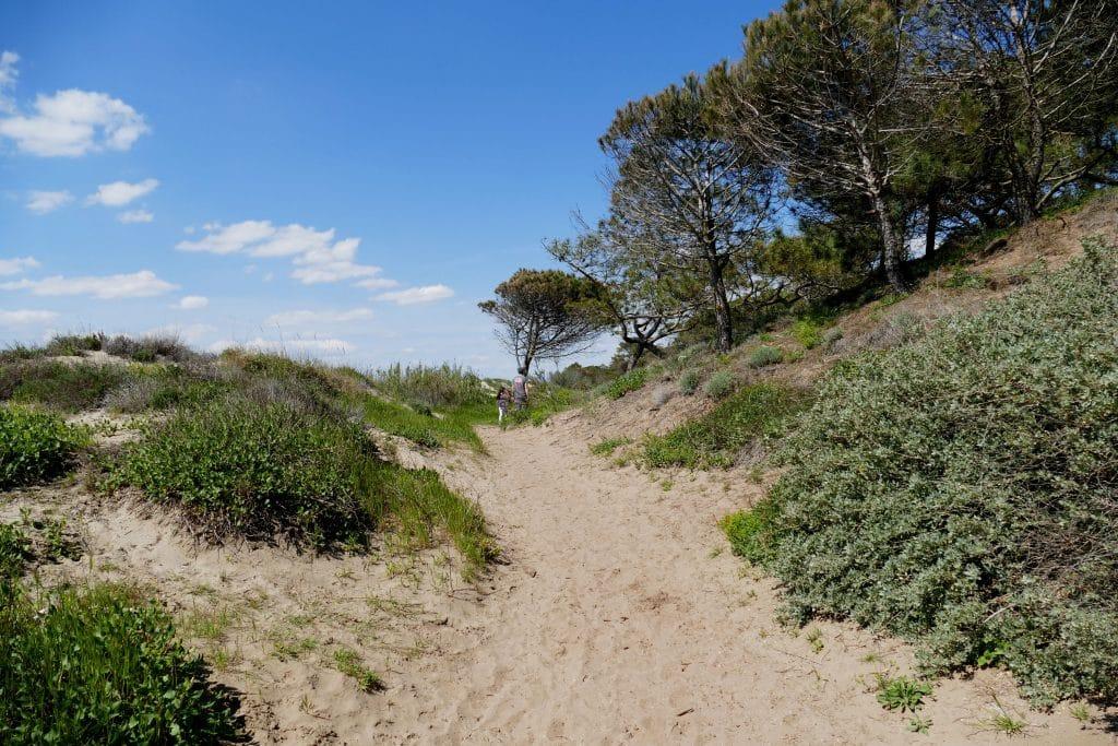 sentier de la tamarissière - Agde