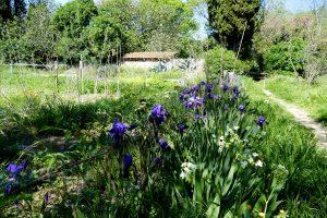 Jardin de Villeneuvette - Hérault
