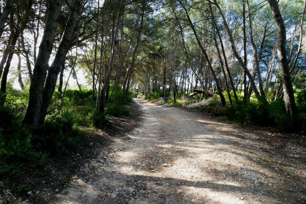 Via Domitia - Pinet