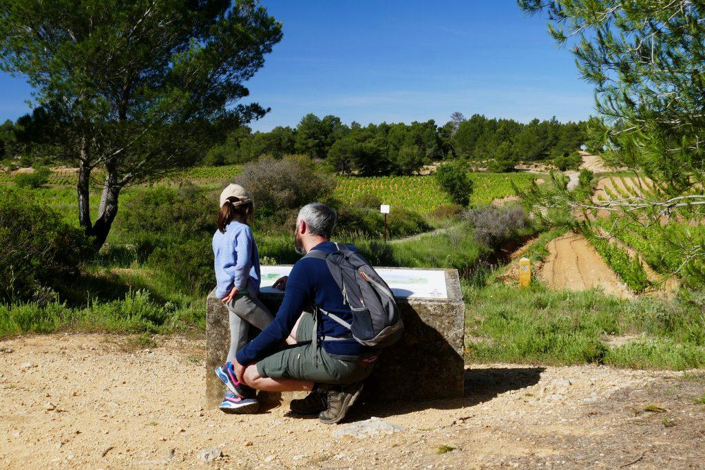 père et fille devant les vignes du Picpoul de Pinet