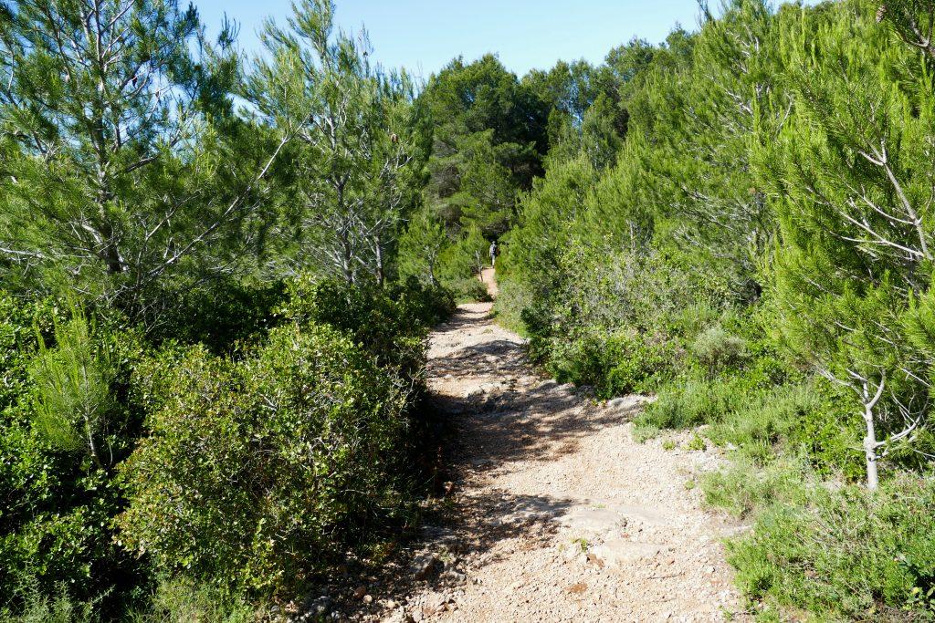 sentier de rando dans le terroir Picpoul de Pinet - Hérault