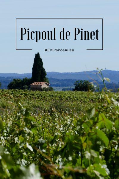 terroir de Picpoul de Pinet