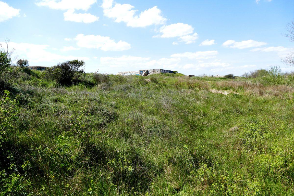 Bunker de la Tamarissière à Agde