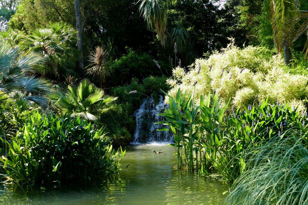 fontaine fleurs dans le parc Olibius Riquier - Hyères