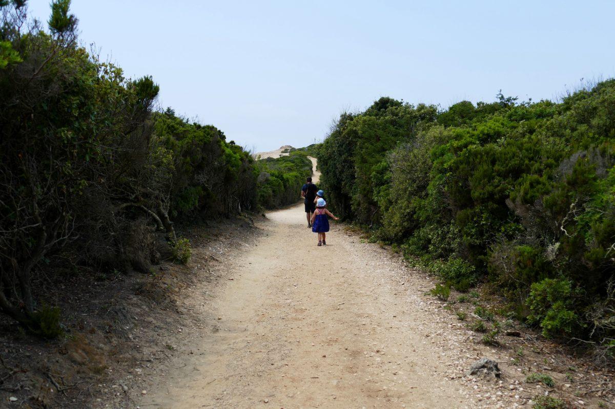 chemin Pointe du Grand Langoustier, Porquerolles