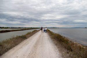 sentier entre le canal du midi et l'étang de Thau