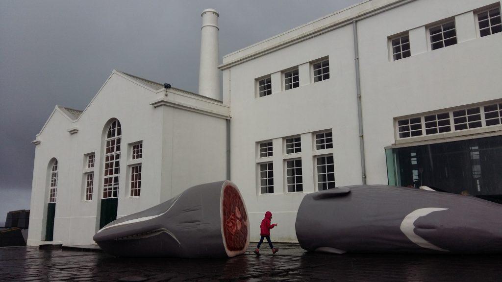 Museuda Fábrica da Baleia do Boqueirão