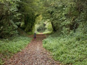 La voie verte au bord de l'Huisne - Orne