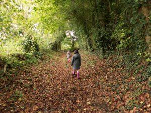chemin creux Gémages - Orne