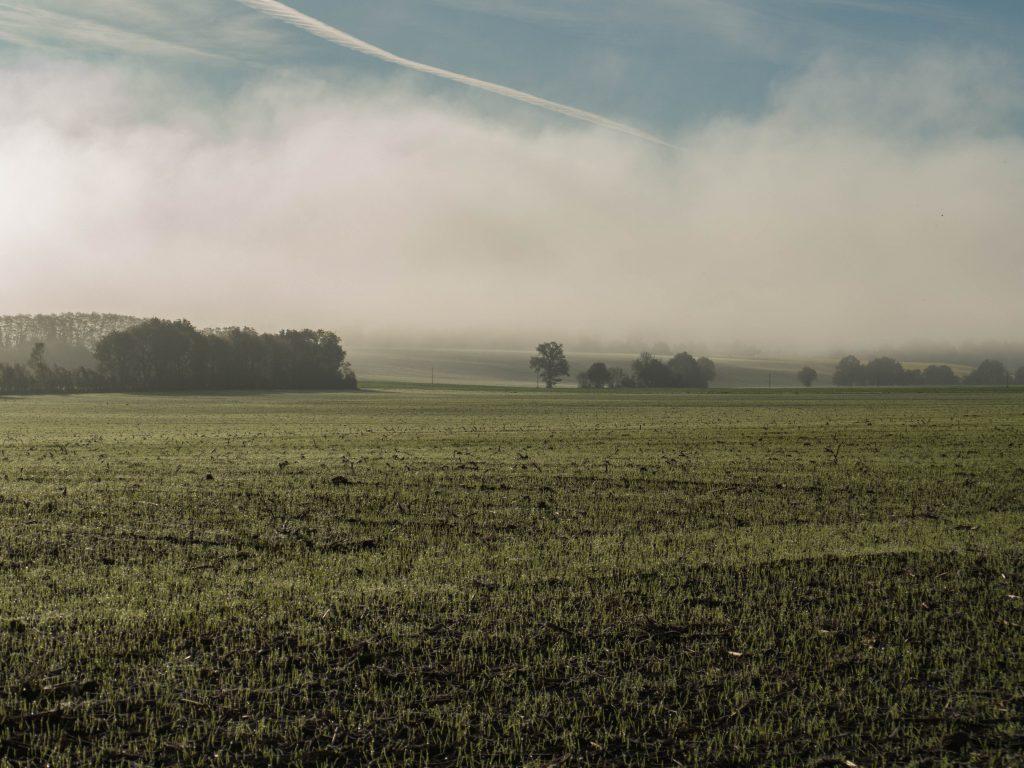 campagne percheronne au lever du soleil