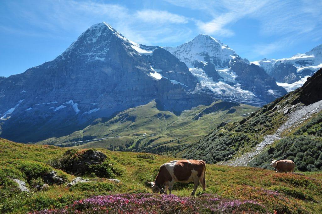 l'Eigerwand