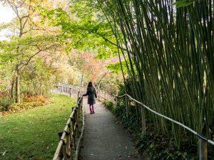 enfant dans les allées du jardin de Claude Monet à Giverny