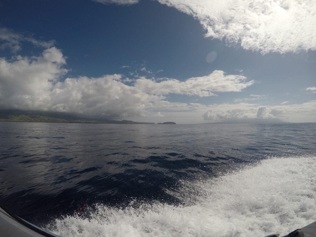 Pico depuis l'océan en zodiac - Açores