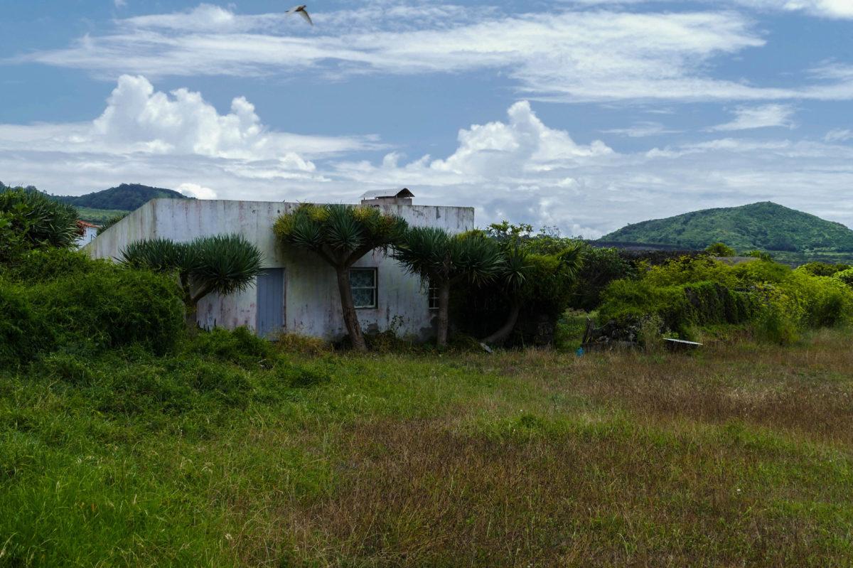 maison à Criacao Velha - Pico (Açores)