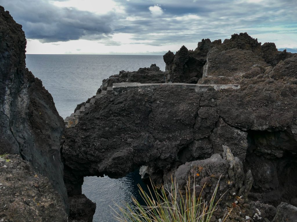 Cachorro sur Pico aux Açores