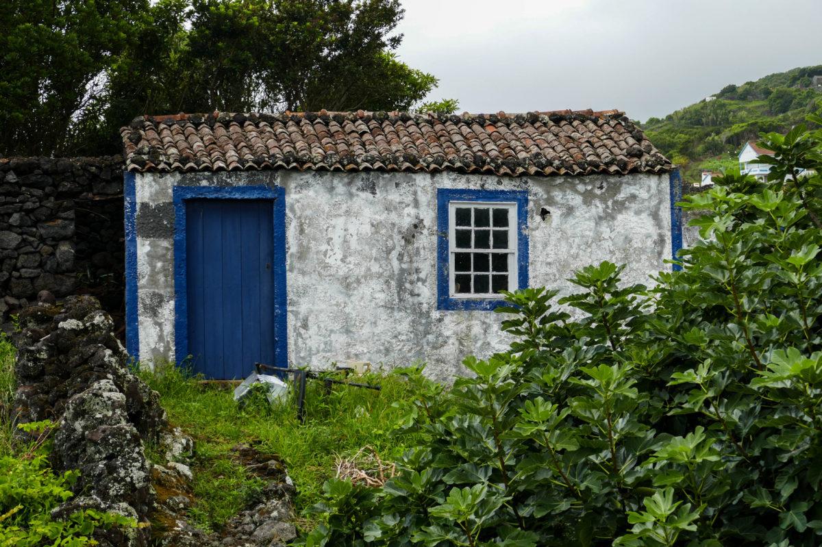 maisonnette à Calheta De Nesquim sur Pico aux Açores