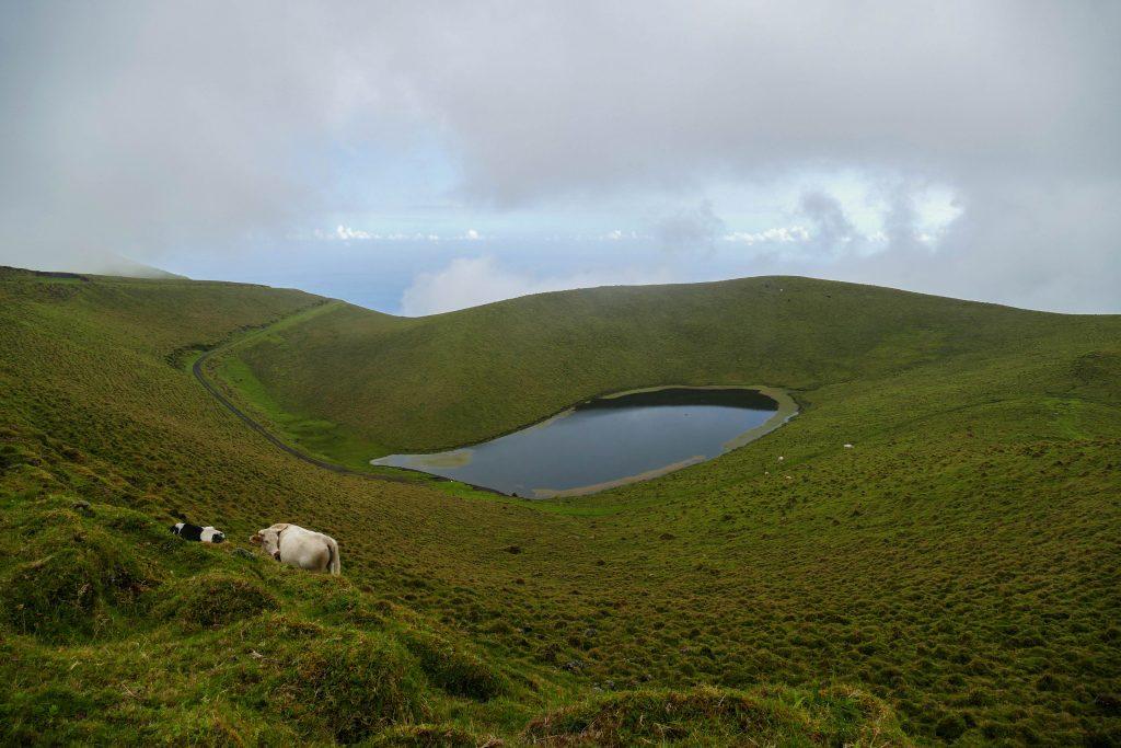 lagoa Rosada Pico aux Açores