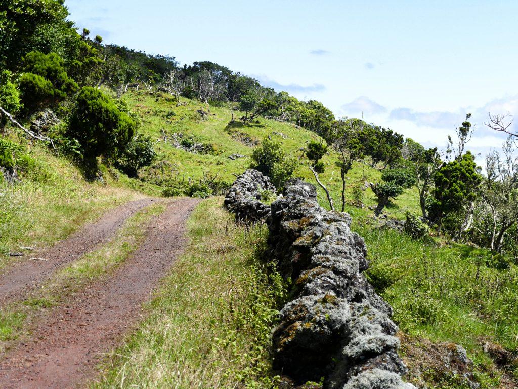 route de l'extrême sur les hauteurs de Pico aux Açores