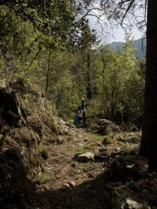 hameau de Paganellu - corse