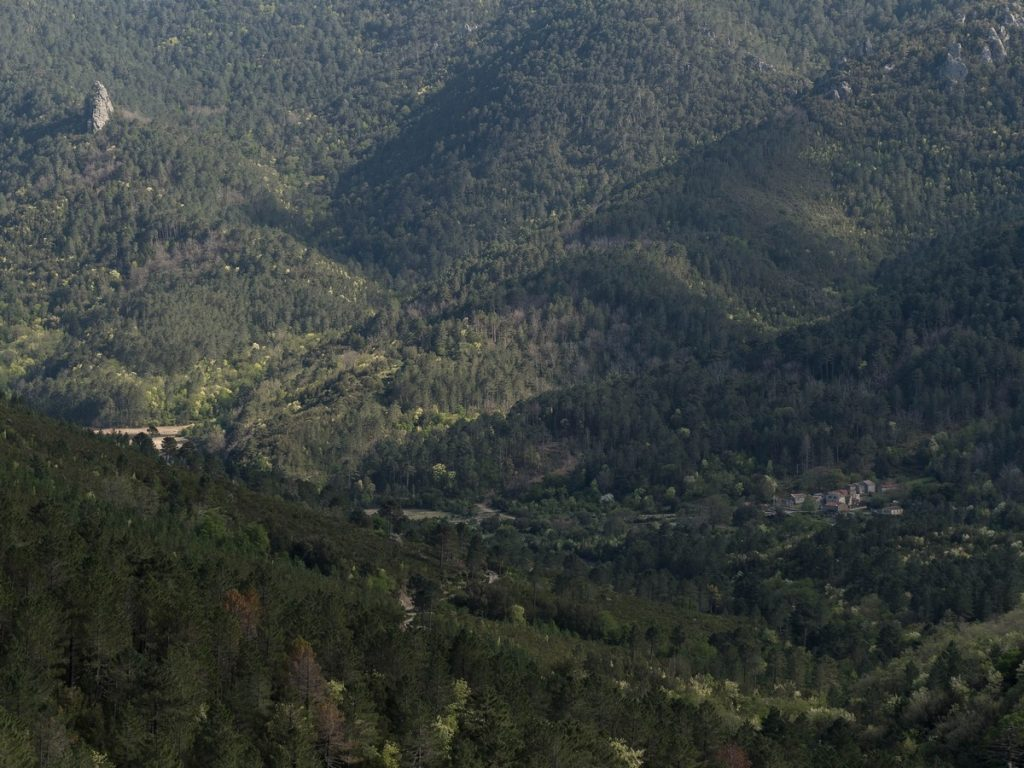 vallée du fiumorbo depuis Rosse