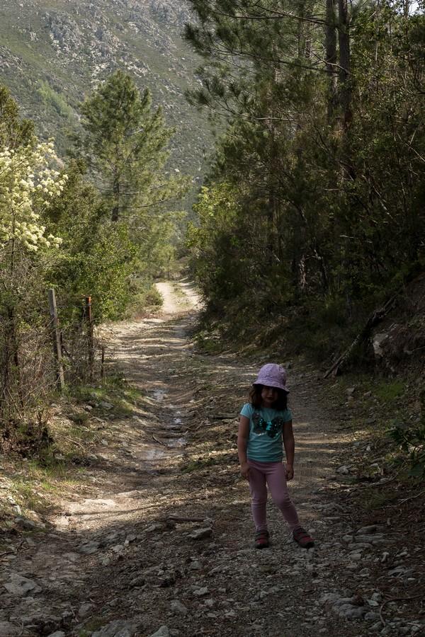 enfant qui en a marre en randonnée