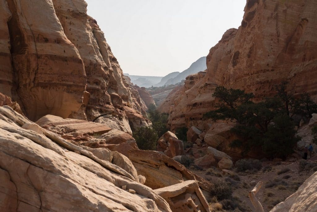 Cohab Canyon dans Capitol Reef