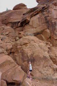petroglyphes - dinosaur National monument