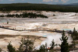 Norris Geyser - Yellowstone