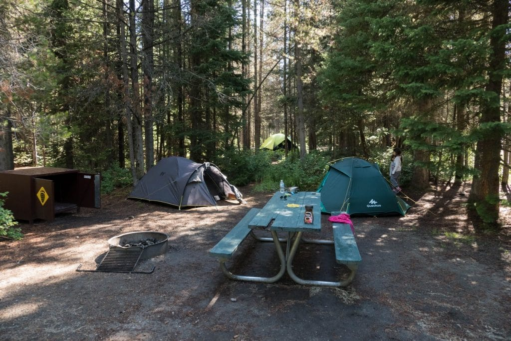 camping colter bay - grand téton