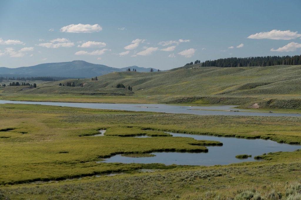 vallée du Yellowstone