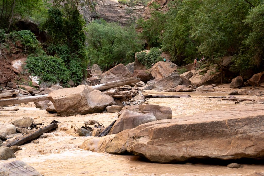 Riverside Walk - Virgin River - Zion