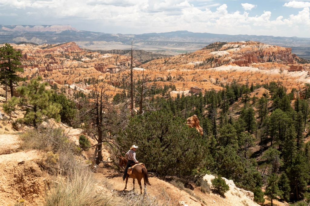 cavalier dans bryce-canyon